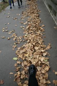 Mis botas pisando París.